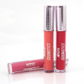 Popular Silver Cover Hot Design Lip Gloss