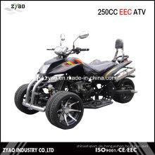 250ccm Trike ATV Quad Heißer Verkauf in Deutschland 14inch Alufelgen Wassergekühlter Motor