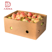 Top quality custom made cheap price 1kg 2kg 3kg 5kg farm fresh dragon fruit box
