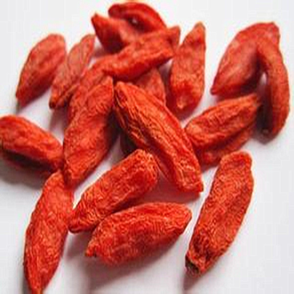 Certifierad Organic AD Drying Wolfberry Fruit Goji bär