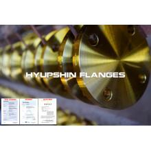 Carbon steel flanges EN1092-1 DIN BS4504 ANSI standard