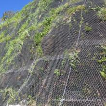 Slope Protection System rockfall barrier hexagonal mesh rockfall netting