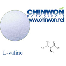 Plant Source Amino Acids L Valine