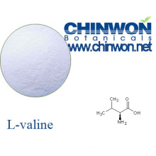 Plant Source Amino Acids L Valine