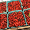 Bio goji berries with zero pesticide/low sugar Chinese wolfberry in Ningxia