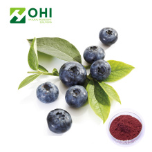 Chiết xuất blueberry 25% Anthocyanidin