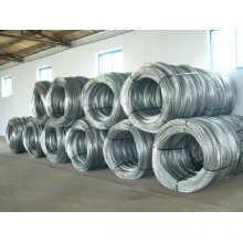 PVC Coated Razor Barbed Wire Bto-12 (Hebei Factory & Export)