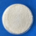 Gelatin powder/pharmaceutical Gelatin Powder