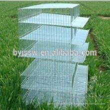 Cage de batterie de caille de couche (usine professionnelle)