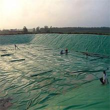 Geomembrana circular de HDPE de 40 ml para revestimiento de estanque Shrim