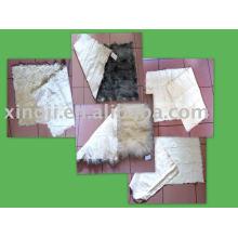 cabrito de pele de cordeiro cabrito / tibete / kalgan / tianjin cordeiro cor natural e tingida