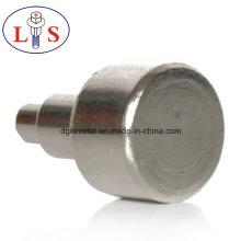 Suministre gran cantidad de alta calidad de remaches de sujetadores no estándar