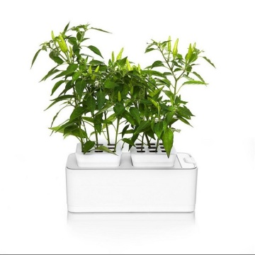 Mini+DIY+Hydroponic+Flower+Net+Pot+Grow+System