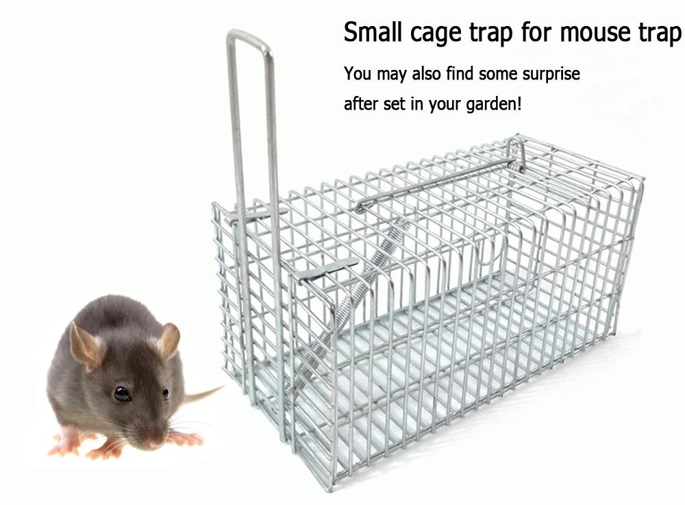 Small Cage Trap