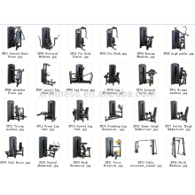 XF17 Xin rui fitness equipment factory supply Seated Abdominal