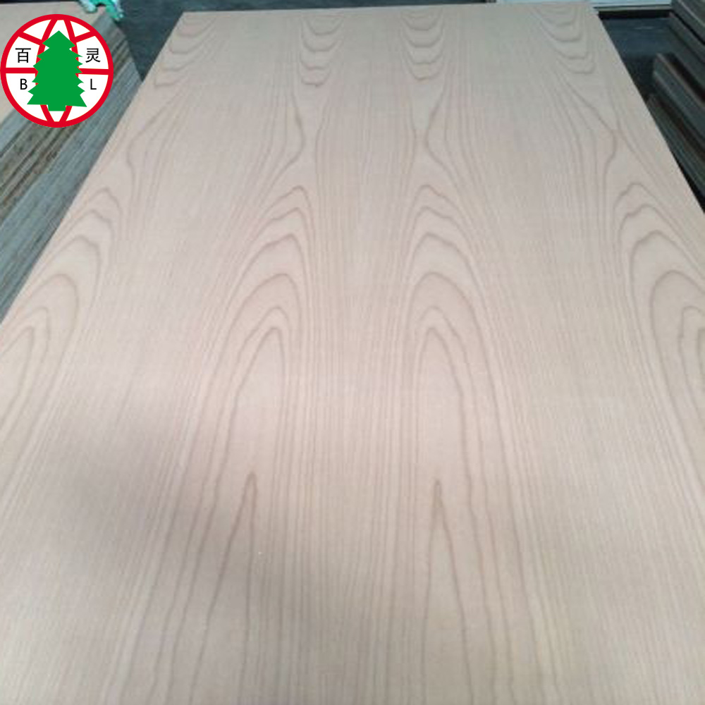Beech Plywood 16