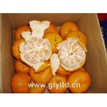 Новый урожай китайский свежий мандарин оранжевый