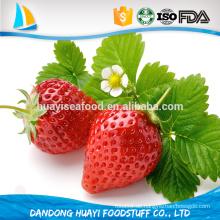 Neue Ernte süße frische gefrorene große Größe Erdbeere