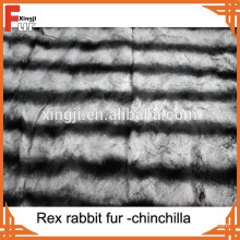 Fourrure animale authentique Rex Chinchilla