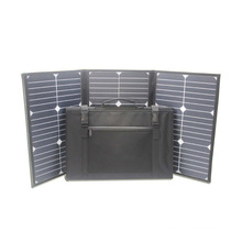 Hottest Selling High Efficiency 60W Solar Panel Charger with Cheap Price