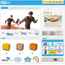 Cheap Courier Express DHL to All Over The World