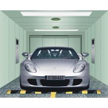 Auto Auto Ascenseur Ascenseur CE approuvé (GRA10)