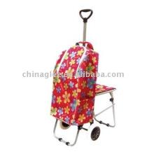 carrinho de compras com cadeira de dobramento