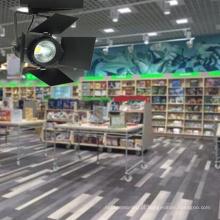 Luz do ponto da trilha do diodo emissor de luz 9W / 12W para a iluminação da loja / loja