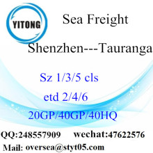 Shenzhen Port Mer Fret maritime à Tauranga