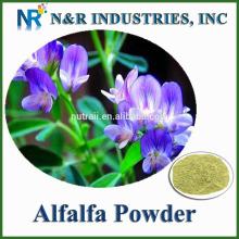 Good price and Bulk Alfalfa Powder 80mesh to 200mesh without Dextrine