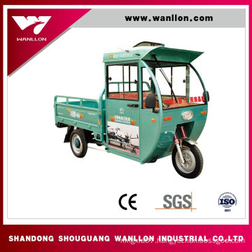 800W Cargo E-Motorcycle Tricycle Scooter for Adults