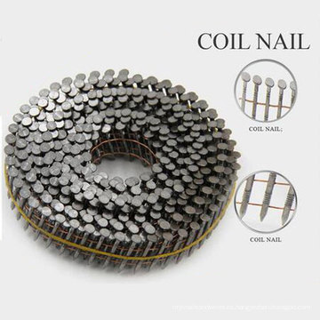 Professional Jumbo bobina de uñas con buena calidad