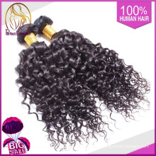 China Shipping Professional Quality African American Human Hair Products Wholesale