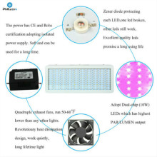 LED Plant Grow Light For Greenhouse Vegetables
