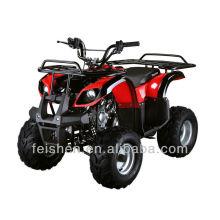 110cc Kinder Traktor Kinder atv zum Verkauf atv für Kinder Benzin (FA-D110)
