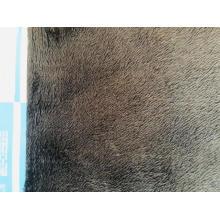 Print Mircofleece compound fleece fabric