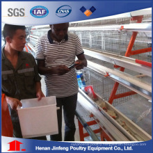 Battery Chicken Equipment Cage for Farm Use on Sell