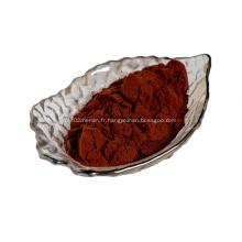 extrait de pépins de raisin 95% de poudre de procyanidine