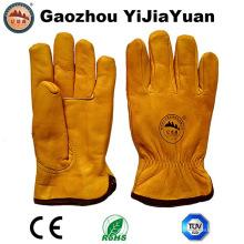 Sicherheits-Handschuhe für das Fahren mit Thinsulate Full Futter
