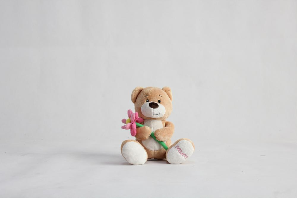 Teddy bear mother plot rose flowers bear