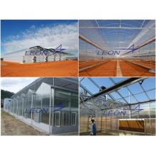 LEON series hydroponic greenhouse systems/ tunnel greenhouse for sale