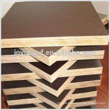 Hoja de madera contrachapada de arce