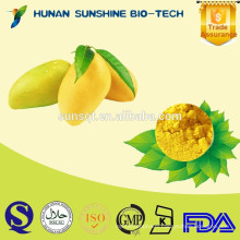 Alibaba china mango fruit powder for making mango sago