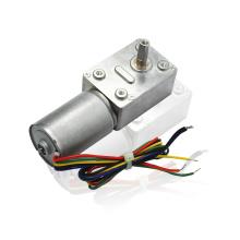 Worm Drive Gear Reducer Motor 12v