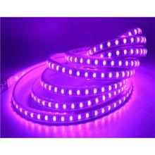 Décoration 110v 220v 5050 smd multicolore extérieure 5050 rgb cct led bande