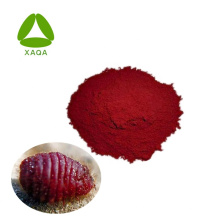 High Quality Natural Pigment 50% Carmine Cochineal Powder