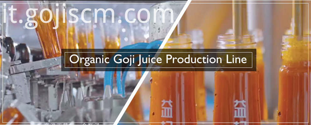 Goji Juice Concentrate for Health production line