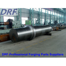 Forging Shaft (Large axis forging Gear forgings)