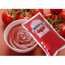 Pasta de tomate orgânico saquinho