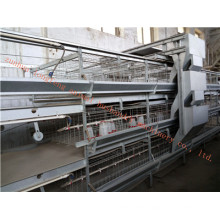 Galvanized High Quality Rearing Cage